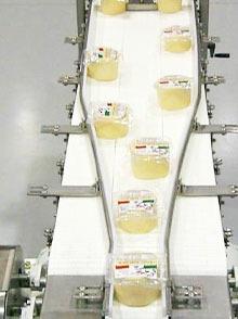 豆制品白色皮带输送线